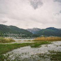 pic-1308
